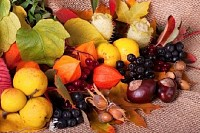 Colorful Autumn Arrangement