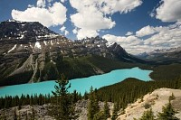 Lac Peyto, Rocheuses canadiennes