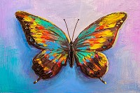 Oil painting , beautiful butterfly