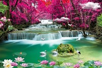 3D beautiful backgrounds sea and waterfall ,bird..