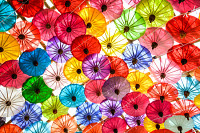 Colorful of Paper Parasols,Paper Umbrella Backgrou