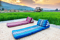 Relaxing couch in rice field, Comfortable bed in a