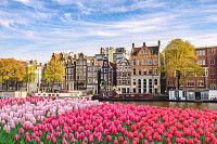 Amsterdam Netherlands, city skyline Dutch house at