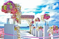 Pink, Yellow and Purple Decor on Pathway