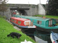 On Sallins Canal Kildare Ireland