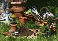 Lawn and Garden Tools-Still Life