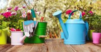 Colorful Garden Pots and Watering Cans