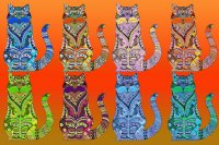 Colour cats