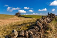 stone wall blue sky trees landscape