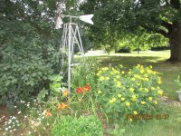 Garden with windmill