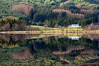 Loch Chon reflections