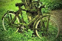 old bike covered in moss