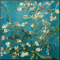 Almond Branches In Bloom San Remy, blue